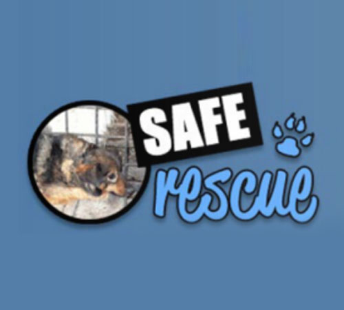 SAFE Animal Charity